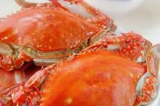 清蒸梭子蟹的做法大全