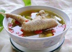 鸽子汤的做法大全