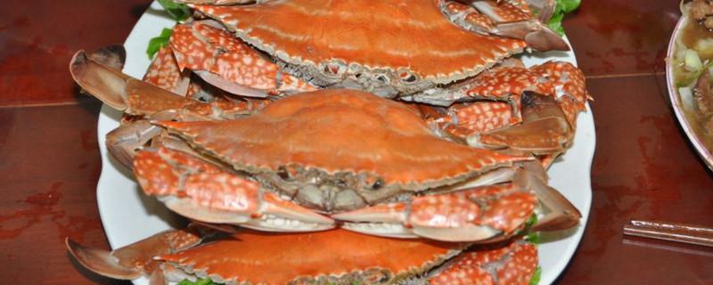 清蒸大螃蟹窍门