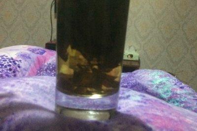 瘦身荷叶轻身茶怎么做好吃?瘦身荷叶轻身茶的家常做法