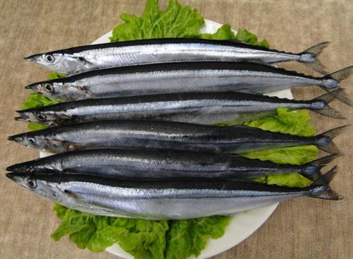 秋刀鱼的作用与功效及食用方法_秋刀鱼的禁忌介绍【图文】