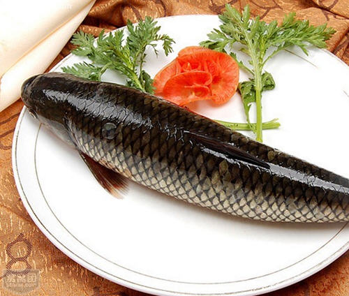 草鱼的功效与作用及食用方法_草鱼的食用禁忌【图文】