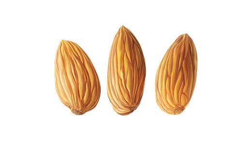 多吃杏仁有什么坏处 杏仁吃多了会怎样
